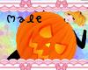 R| Pumpkin Costume M