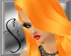 Citrus Sophia