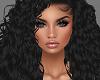 H/Viola Black