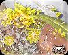 ! FlowerDrapeYellowslv