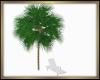 Tree w/ no pose Lounger