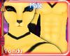 🐝 Hachi Male Fur