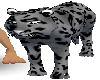 leopard King2