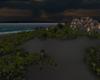 Cave Dark Island