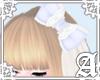 Veil Princess Bow~ Laven