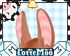 Long Ginger Bunny Ears