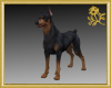 Doberman Pet