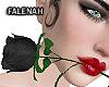 🖤 Eros Black Rose