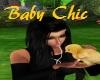 Baby Chic *CUTE*
