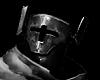 780 Teutonic Knights