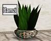 .B.Morocco Planter