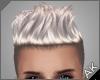 ~AK~ Zayn: Silver Ash