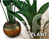 TP Plant A - Oaken