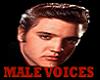 Mans Voices GMA