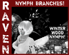 NYMPH BRANCHES WINTER!