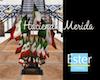 HACIENDA Mexican banners