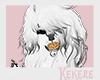 K| Tigga Hair