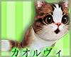 Shoulder Kitty - Orange