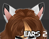 S  Aze Ears 2