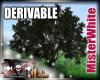 MRW|Large Oak Tree