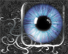 DD Baby Blue Dream Eyes