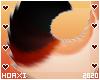 H! Equinox Tail