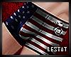 LDL   Unterhose Amerika