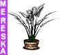 Elegant Plant V3