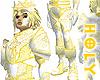 Holy Knight Armor