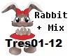 .S. Rabbit Girl + Mix