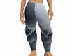 Silver Spike Pants