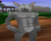 rabbit furry M bundle