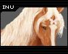 [I] Palomino Horse