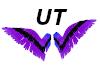 Star wings V2