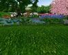 Wonderfull Dream Garten