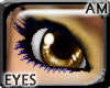 [AM] Azn Brown Eye