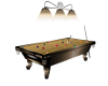 Flash Broze Pool Table