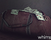 Hoodville Money Bag