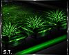 ST: Vivid Plants