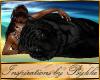 I~Snuggly Black Tiger