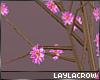 § Flower Branches