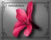 ^B^ Bella Hawaii Flower