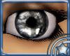 Mirror Eyes - Gray