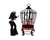 Singing Birds In Cage