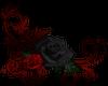 Red/Black Roses- BL