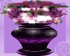 LTR MWAH Anim. Roses