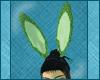 Water PJ Bunny Ears