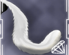 !Q! what a fluffy Tail