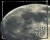 SB Moon easel