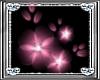 *D* Pretty Pink Flowers